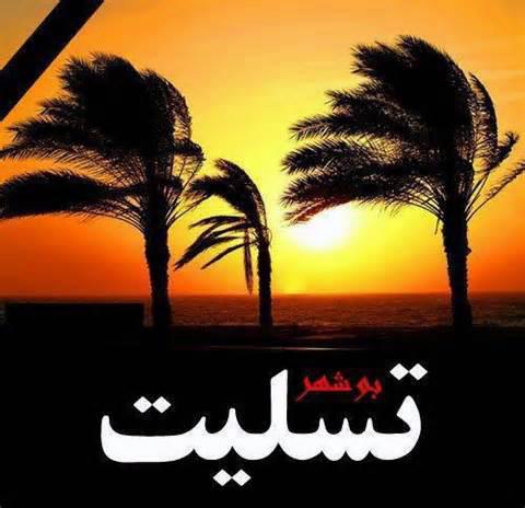 زلزله استان بوشهر